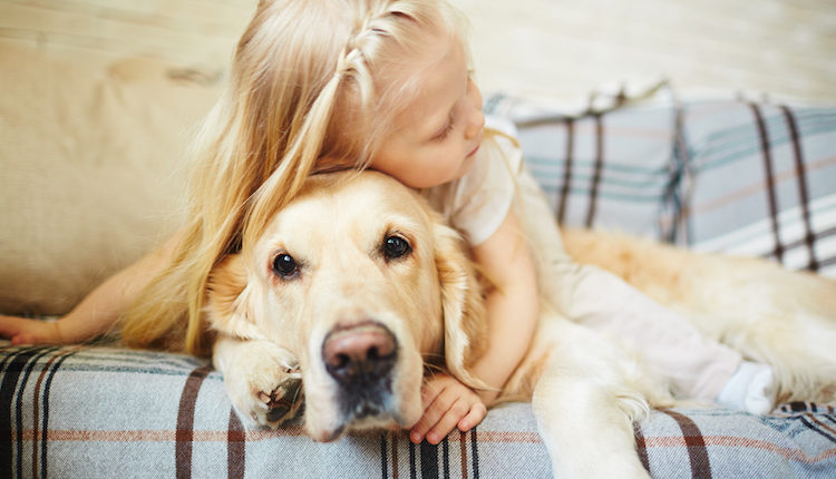 When To Say Goodbye to Your Dog