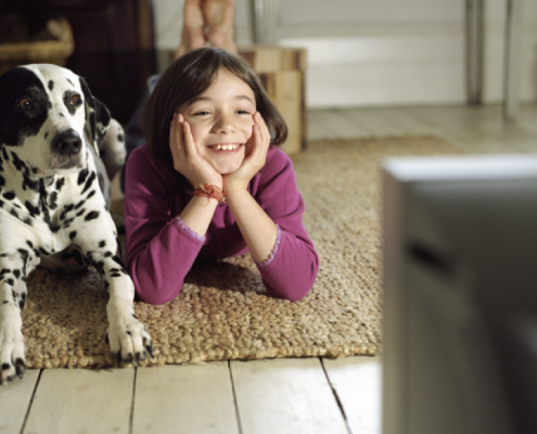 Do Dogs Actually Watch And React To Television?