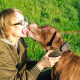 Why do dogs lick?
