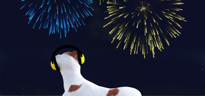 Fireworks Safety Tips for Pets