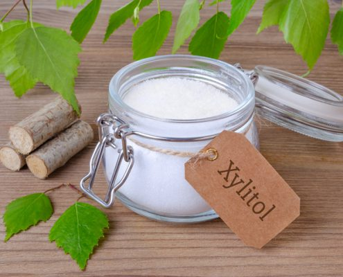 Xylitol, the Deadly Sweetener Capable of Killing Your Dog Within 24 Hours
