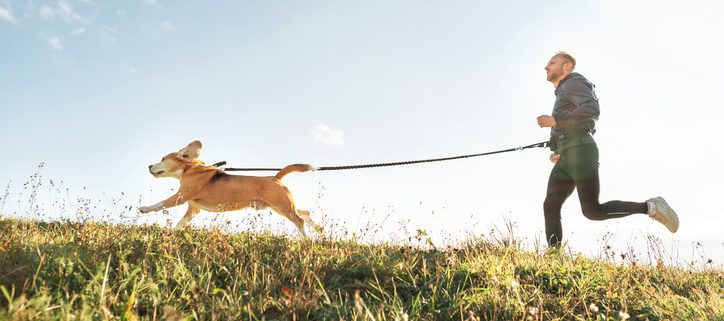How Soon Can a Puppy Become a Runner