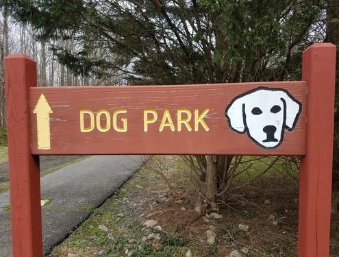 Dog Parks Yay or Nay