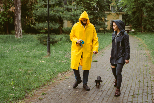 Rain, Rain Go Away! How Rain Affects Your Dog