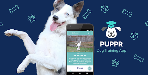 The Doggie App Store!