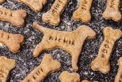 Tuesday's Treat Vegan Doggie Treats