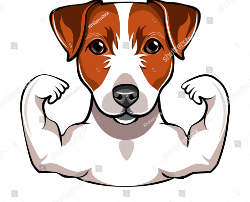 Muscle Building Tips for Your Pup