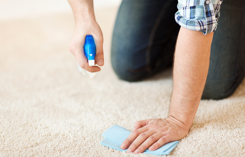 Keeping Carpets Clean with Pets